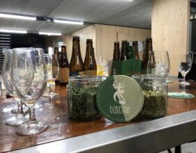 echt Vlielands bier proeven